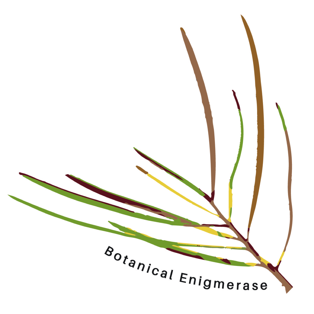 Botanical Enigmerase