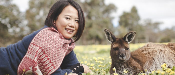 Kangaroo Island Wool