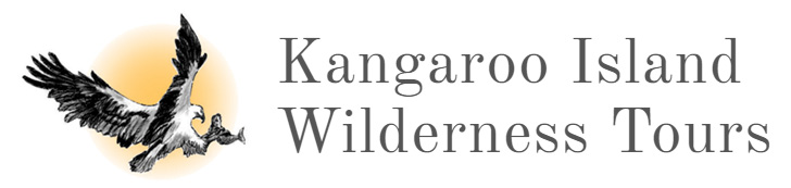 Kangaroo Island Wilderness Tours